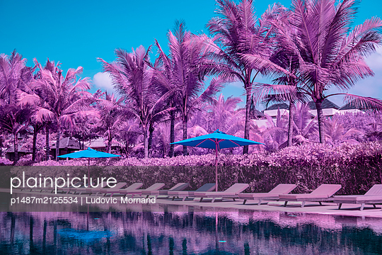 Infrared photography, Resort pool - p1487m2125534 by Ludovic Mornand