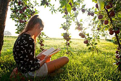 Unter dem Apfelbaum lesen - p533m2044359 von Böhm Monika