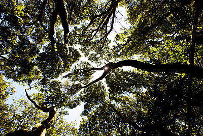 La Gomera - p304m1069479 by R. Wolf