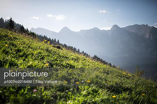 France, Aravis mountains  - p1007m2216490 by Tilby Vattard