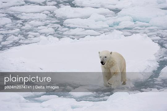 p924m2074741 von Delta Images