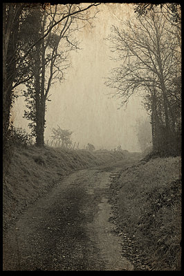 France, Old photo, path in the fog - p1402m2244994 by Jerome Paressant