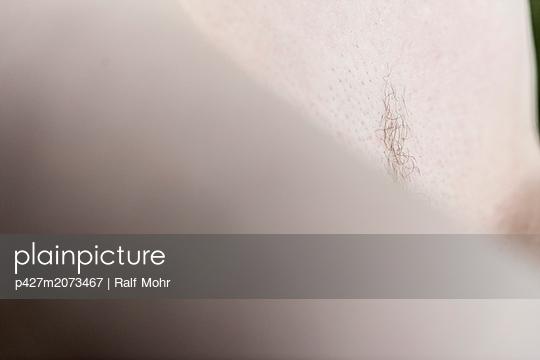 Pubic hair - p427m2073467 by Ralf Mohr