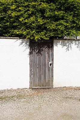 Garden gate - p1057m903769 by Stephen Shepherd