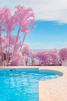 Polynesia, Tahiti, Tropical palm tress and swimming pool in infrared - p1487m2253925 by Ludovic Mornand