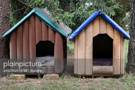 Two wooden dog houses  - p1527m2116782 by Slaveng