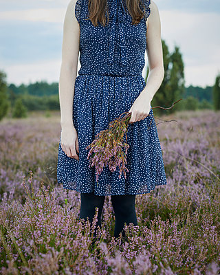 Picking heath - p1124m931800 by Willing-Holtz