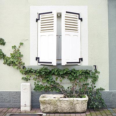 Halb geöffneter Fensterladen, Sarreguemines, Frankreich - p1026m834347 by Alexandra Dost
