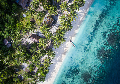 Overhead view of trees on shore by sea - p1166m1489691 by Cavan Images