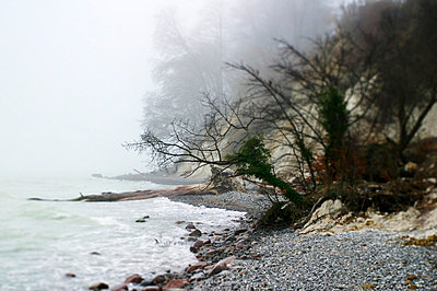 Kiesstrand im Nebel - p9790047 von Kesler