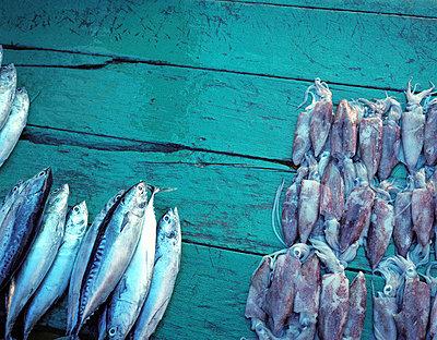 Indonesia, fish market - p2682664 by Rui Camilo