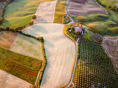 Aerial view of farmhouse and fields, Tuscany, Italy - p651m2006208 by Matteo Colombo photography