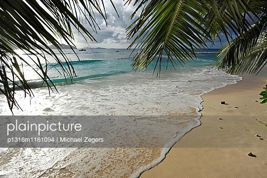 Palmen am Strand Anse Severe, Insel La Digue, die Seychellen, Indischer Ozean - p1316m1161094 von Michael Zegers
