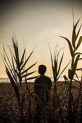 Boy standing on the beach at sunset  - p794m1122292 by Mohamad Itani