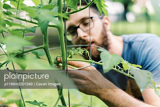 p1166m2201349 von Cavan Images