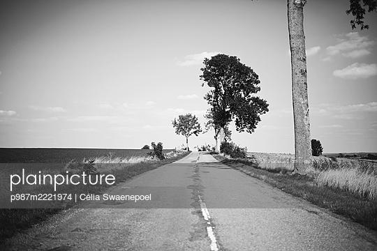 Sur la route - p987m2221974 by Célia Swaenepoel