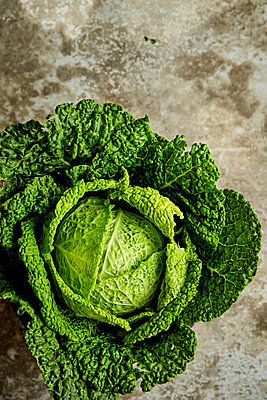 Savoy cabbage - p1640m2261094 by Holly & John