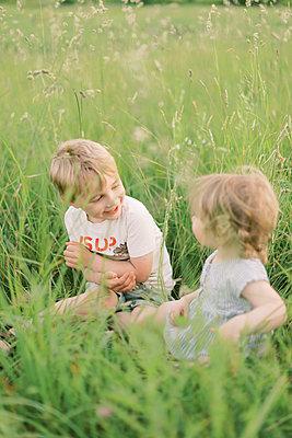 Siblings playing in a grassy meadow. - p1166m2153908 by Cavan Images