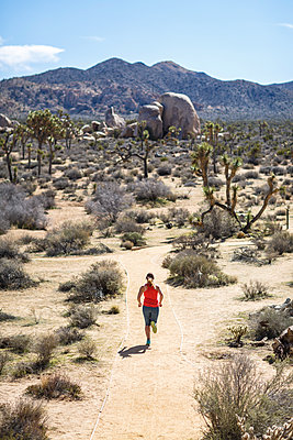 High angle view of female hiker running at Joshua Tree National Park during sunny day - p1166m1414735 by Cavan Images