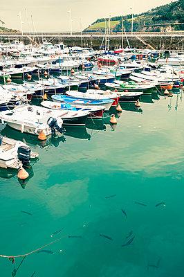 Fischerboote im Hafen von Lekeitio - p470m1043018 von Ingrid Michel
