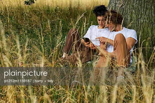 Junges Paar unter dem Baum - Tablet - p1212m1159187 von harry + lidy