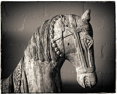 Carved carousel horse - p1154m1462064 by Tom Hogan