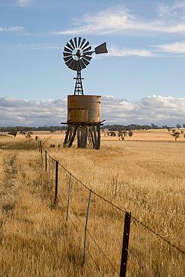 Windrad in Australien - p6280157 von Franco Cozzo