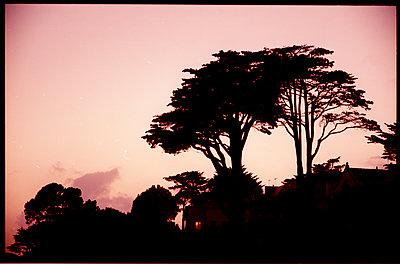 France, Pornic, Sunset - p1654m2280256 by Alexis Bastin