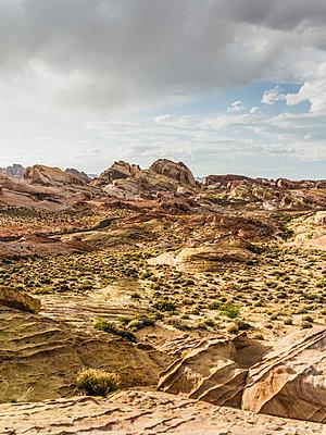 Valley of Fire, Nevada - p1232m1041129 von Moritz Schmid