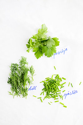 Overhead view of green herbs on white background - p312m1552707 by Johner