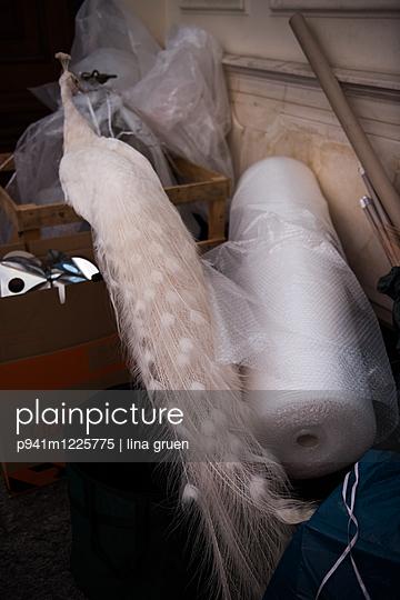 Pfau, Flur Umzug - p941m1225775 von lina gruen
