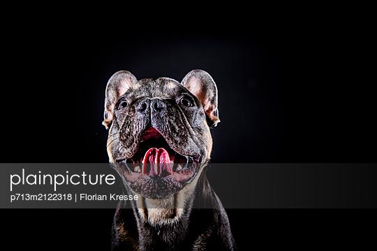 p713m2122318 by Florian Kresse
