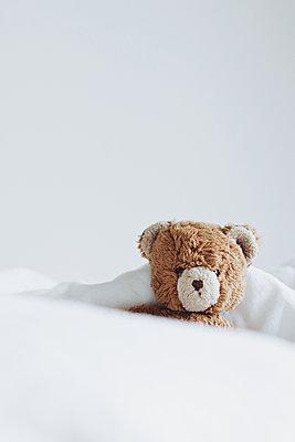 Teddybär - p1006m1441821 von Danel