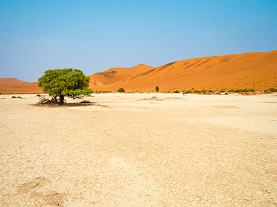 Africa, Namibia, Namib desert, Naukluft National Park, Sossusvlei - p300m1568380 von Roy Jankowski
