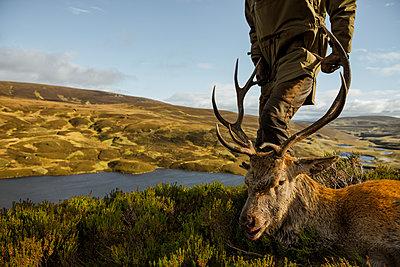 Hunter with deer - p312m2051335 by Hans Berggren