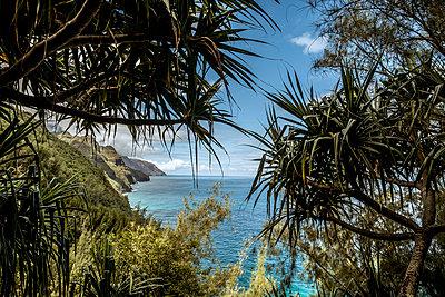 Auf dem Kalalau Trail - p741m892058 von Christof Mattes