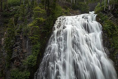 Narada Falls, Mount Rainier National Park, USA - p1480m2228744 by Brian W. Downs