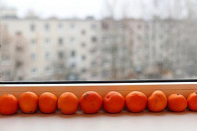 Oranges and the window  - p1063m1200618 by Ekaterina Vasilyeva