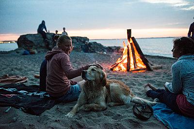 Freunde und Hund am Lagerfeuer am Strand  - p1142m1362245 von Runar Lind