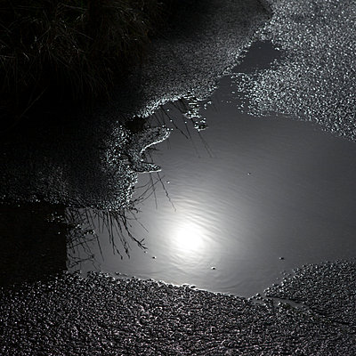 Moonlight reflected in water - p1240m2063341 by Adeline Spengler