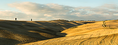 Italy, Tuscany, Val d'Orcia, rolling landscape - p300m1205054 by Christina Falkenberg