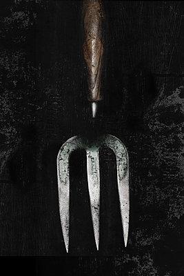 Garden tool - p450m1133294 by Hanka Steidle