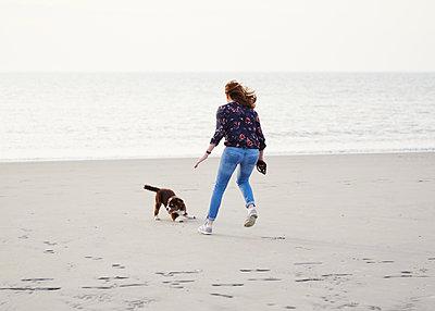 Frau spielt mit Hundewelpen am Strand - p1124m1223963 von Willing-Holtz