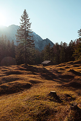Clearing in the sunshine, Karvendel mountain range - p1600m2229834 by Ole Spata