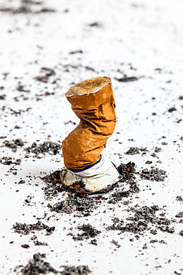 Stubbed out cigarette on white background - p1094m1015434 by Patrick Strattner