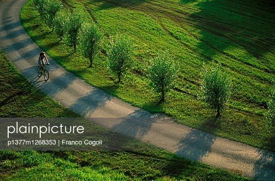 p1377m1268353 von Franco Cogoli