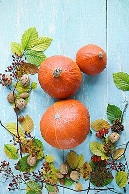 Autumnal arrangement with Hokkaido pumpkins, nuts, rosehips and autumn leaves - p300m2078910 von Achim Sass