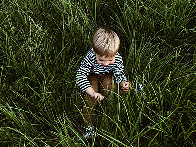 Little boy is sitting in a green summer grass - p1166m2112024 by Cavan Images