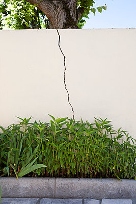 Vertical crack in a wall outside - p590m1511059 by Philippe Dureuil