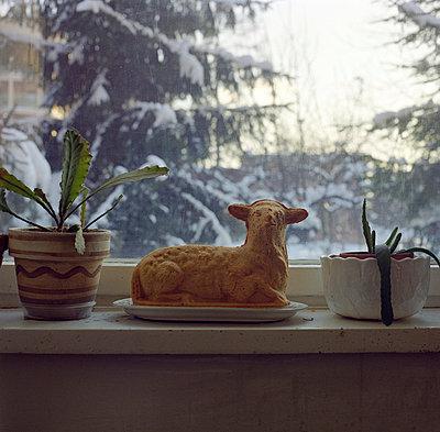 Window box - p0750277 by Lukasz Chrobok